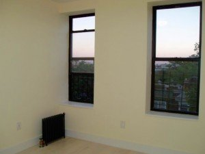 union st 2br apt for rent in crown heights crg3168-b