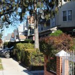 brooklyn ave 2br apt for rent crg3200-h